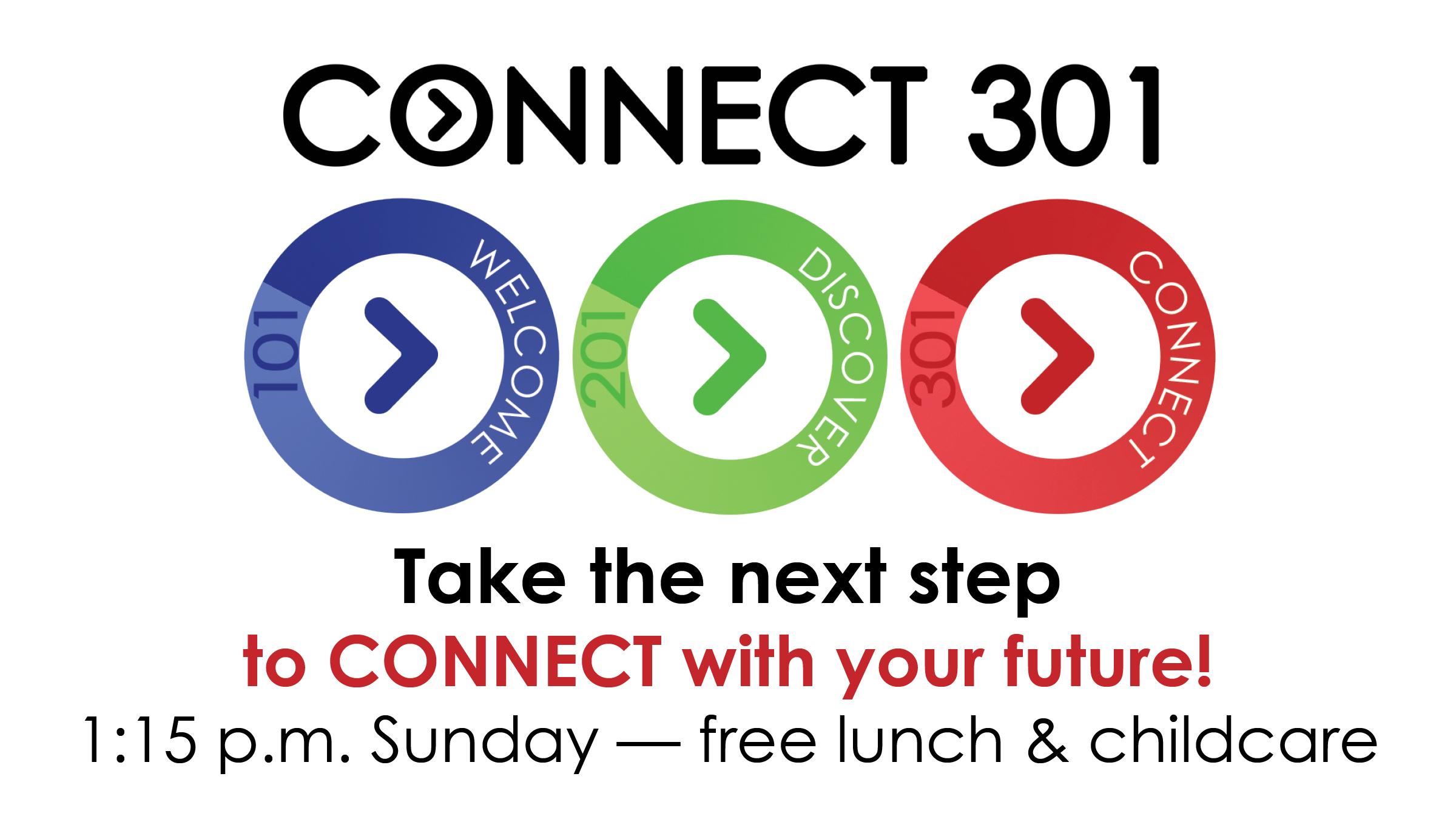 SunConnect301